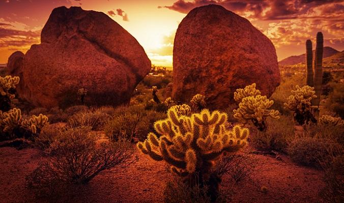 Amerika — das Land der Gegensätze und aller Möglichkeiten — bereist man am besten im Motorhome. Geheimtipp: Phoenix und sein ganzer Stolz, den man einfach mal gesehen haben muss. Es wartet ein Womo-Abenteuer in Arizona... (#03)