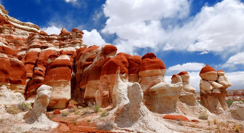 Und wieder zieht es mich in den Südwesten der USA, der wohl schönsten Wüstengegend auf diesem Kontinent. Arizona und dessen angrenzende Bundesstaaten halten für Touristen unzählige Attraktionen und Sehenswürdigkeiten bereit. (#01)