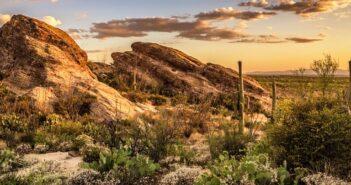 Durch den Süden ArizonasDurch den Süden Arizonas