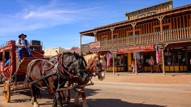Der Bundestaat Arizona ist einer der touristisch bedeutendsten Bundestaaten der USA. Er liegt im Westen des Landes und erwartet jedes Jahr mehr als fünf Millionen Besucher. Die Urlauber werden durch die grandiose Natur, den tiefen Schluchten und den vielen wilden Tieren angelockt. (#01)