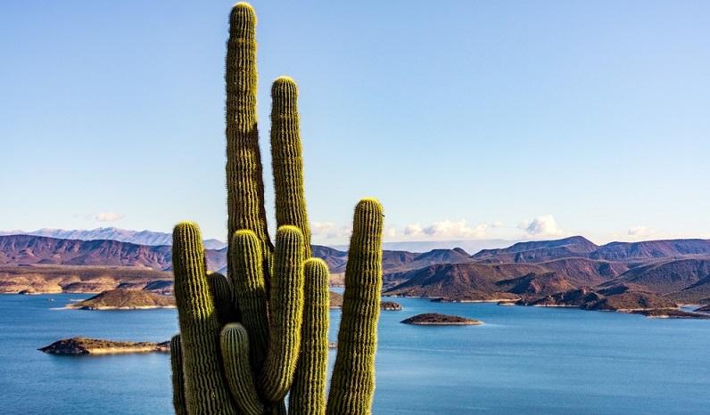 Wem nach stunden- oder tagelanger Entdeckungstour durch Phoenix die Hitze etwas zu Kopf steigt, der findet etwas außerhalb von Phoenix genügend Abkühlung. Der 40 Quadratkilometer große See Lake Pleasant lädt zur Entspannung ein. (#04)